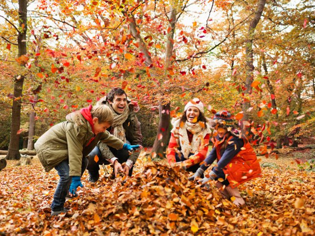Falling For Autumn: 5 Fun-Filled Fall Activities For You